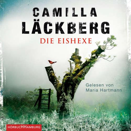 Die Eishexe - Ein Falck-Hedström-Krimi 10