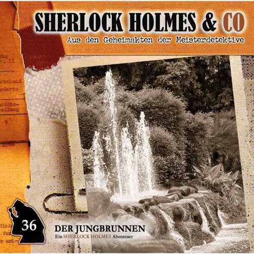 Hoerbuch Sherlock Holmes & Co, Folge 36: Der Jungbrunnen, Episode 1 - Markus Topf - Charles Rettinghaus