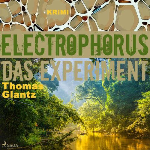 Electrophorus - Das Experiment
