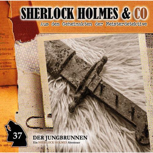 Hoerbuch Sherlock Holmes & Co, Folge 37: Der Jungbrunnen, Episode 2 - Markus Topf - Charles Rettinghaus
