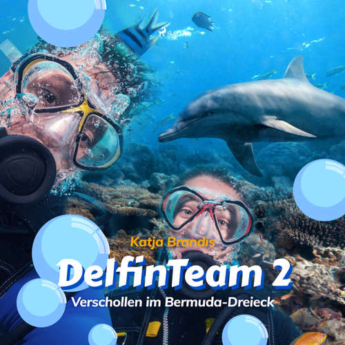 Verschollen im Bermuda-Dreieck - DelfinTeam 2
