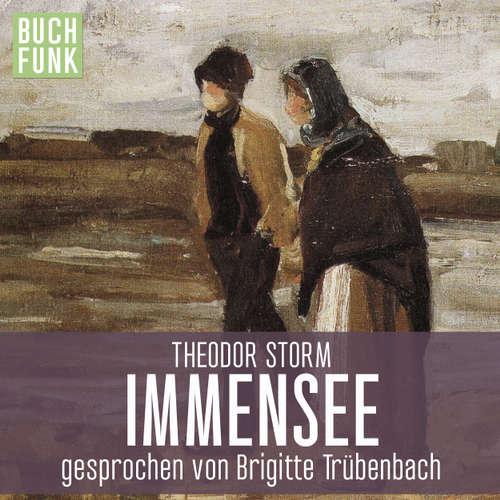 Hoerbuch Immensee - Theodor Storm - Brigitte Trübenbach