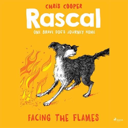Facing the Flames - Rascal 4