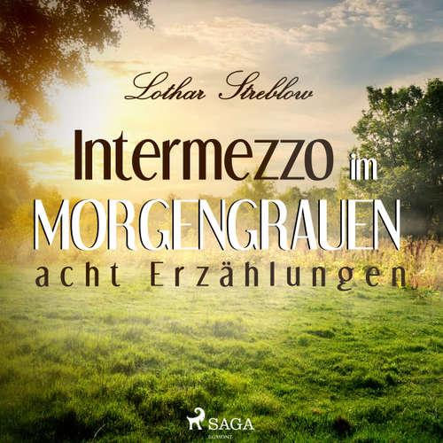 Intermezzo im Morgengrauen - Acht Erzählungen