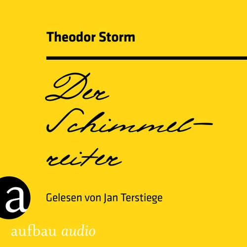 Hoerbuch Der Schimmelreiter - Theodor Storm - Jan Terstiege