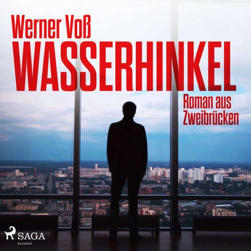 Wasserhinkel - Roman aus Zweibrücken