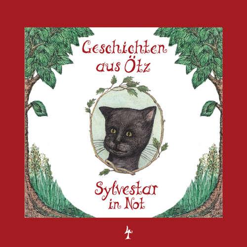 Geschichten aus Ötz, Folge 4: Sylvestar in Not