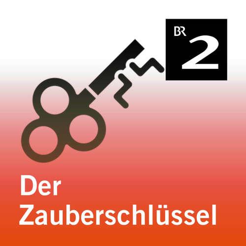 Hoerbuch Der Zauberschlüssel - Cornelia Neudert - Jan Köster