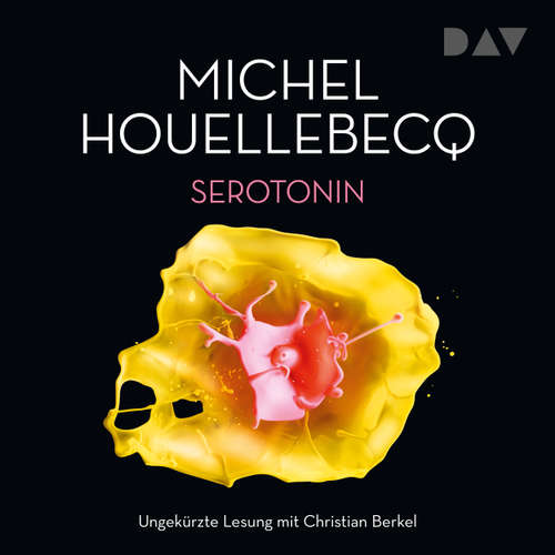 Hoerbuch Serotonin - Michel Houellebecq - Christian Berkel
