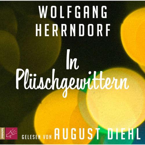 Hoerbuch In Plüschgewittern - Wolfgang Herrndorf - August Diehl