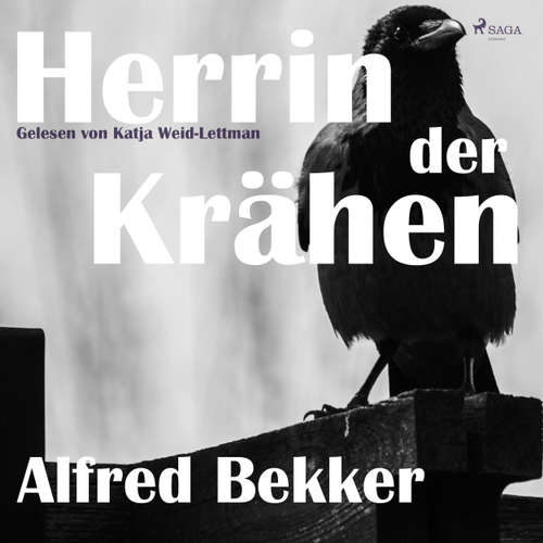 Hoerbuch Herrin der Krähen - Alfred Bekker - Katja Weid-Lettmann