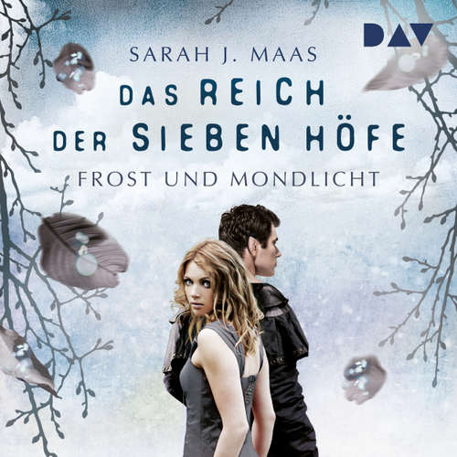Hoerbuch Frost und Mondlicht - Das Reich der sieben Höfe, Teil 4 - Sarah J. Maas - Ann Vielhaben