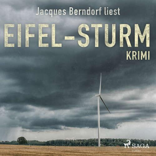 Eifel-Sturm - Kriminalroman aus der Eifel