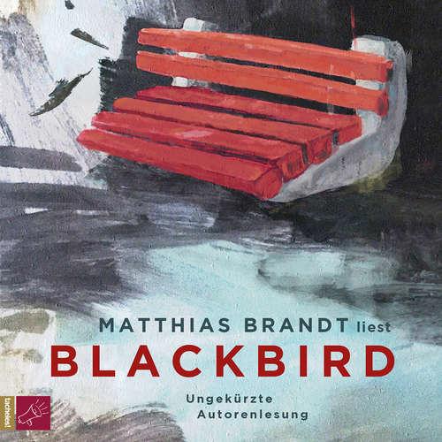 Hoerbuch Blackbird - Matthias Brandt - Matthias Brandt