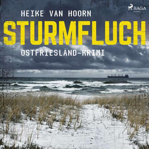 Sturmfluch - Ostfriesland-Krimi - Ein Fall für Kommissar Möllenkamp 2