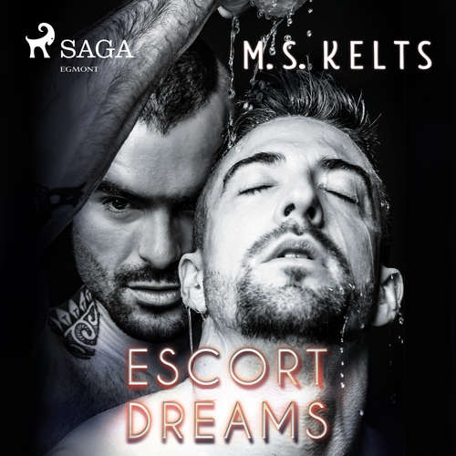 Escort Dreams - Dreams-Reihe 1