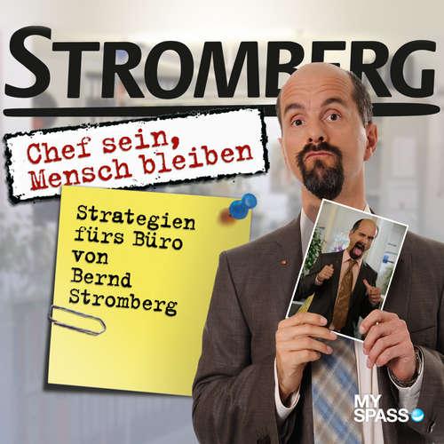 Hoerbuch Stromberg - Chef sein, Mensch bleiben - Ralf Husmann - Christoph Maria Herbst