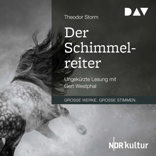 Hoerbuch Der Schimmelreiter - Theodor Storm - Gert Westphal