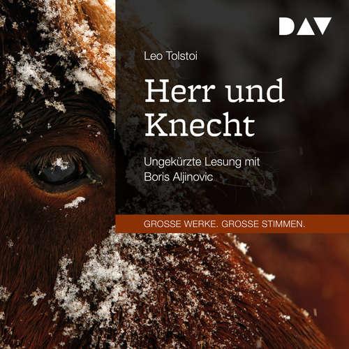 Hoerbuch Herr und Knecht - Leo Tolstoi - Boris Aljinovic