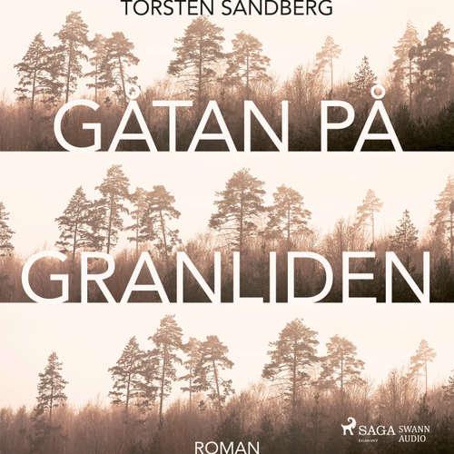 Audiokniha Gåtan på Granliden - Torsten Sandberg - Kim Wésen