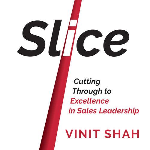 Audiobook Slice - Vinit Shah - Vinit Shah