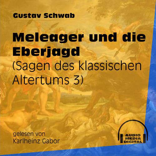 Hoerbuch Meleager und die Eberjagd - Sagen des klassischen Altertums, Teil 3 - Gustav Schwab - Karlheinz Gabor