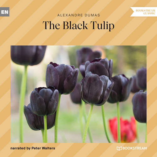 Audiobook The Black Tulip - Alexandre Dumas - Peter Walters