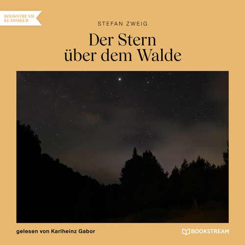 Hoerbuch Der Stern über dem Walde - Stefan Zweig - Karlheinz Gabor