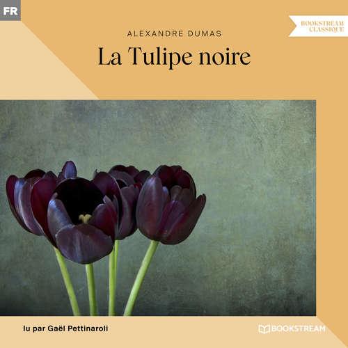 Livre audio La Tulipe noire (Version intégrale) - Alexandre Dumas - Gaël Pettinaroli