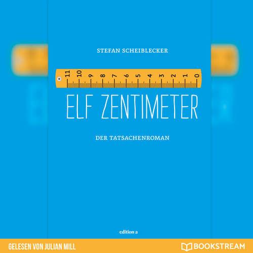 Hoerbuch Elf Zentimeter - Der Tatsachenroman - Stefan Scheiblecker - Julian Mill