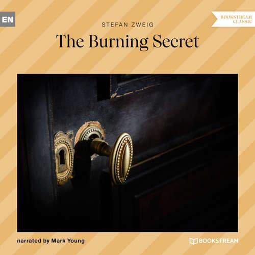 Audiobook The Burning Secret - Stefan Zweig - Mark Young