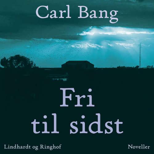 Audiokniha Fri til sidst - Carl Bang - Fjord Trier Hansen