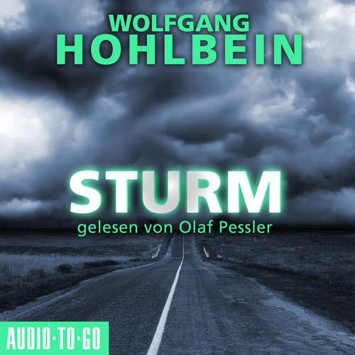 Hoerbuch Sturm - Wolfgang Hohlbein - Olaf Pessler