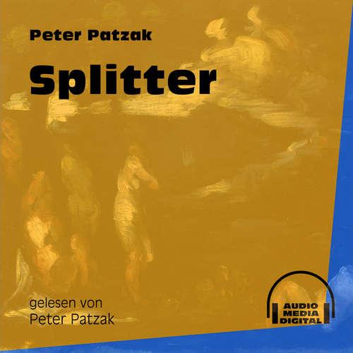 Hoerbuch Splitter - Peter Patzak - Peter Patzak