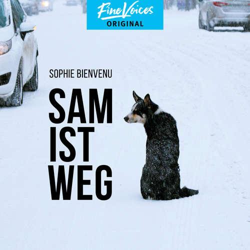 Hoerbuch Sam ist weg - Sophie Bienvenu - Jona Mues