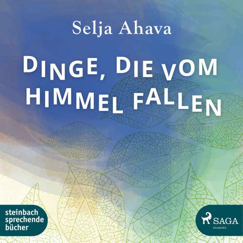 Hoerbuch Dinge, die vom Himmel fallen - Selja Ahava - Beate Rysopp