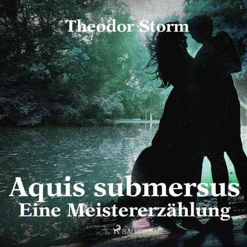 Hoerbuch Aquis submersus - Eine Meistererzählung - Theodor Storm - Klaus Dieter König
