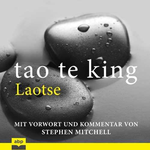 Hoerbuch Tao Te King - Eine zeitgemäße Version für westliche Hörer -  Laotse - Matthias Ernst Holzmann