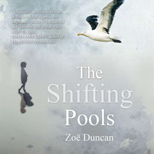 Audiobook The Shifting Pools - Zoe Duncan - Anna Harriott