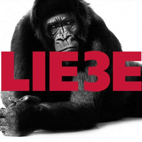 Hoerbuch Hagen Rether, Liebe 3 - Hagen Rether - Hagen Rether