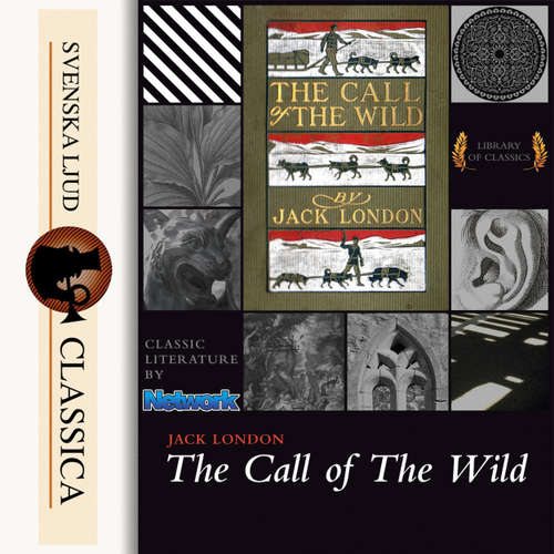 Audiobook The Call of the Wild - Jack London - Mark F Smith