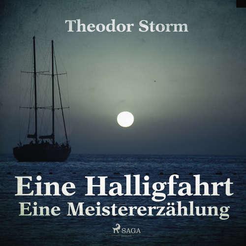 Hoerbuch Eine Halligfahrt - Eine Meistererzählung - Theodor Storm - Helmut Wöstmann
