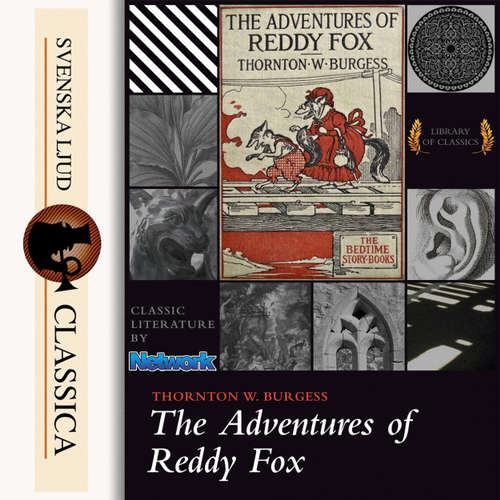 Audiobook The Adventures of Reddy Fox - Thornton W. Burgess - John Lieder