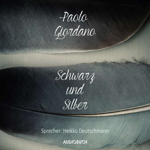 Hoerbuch Schwarz und Silber - Paolo Giordano - Heikko Deutschmann