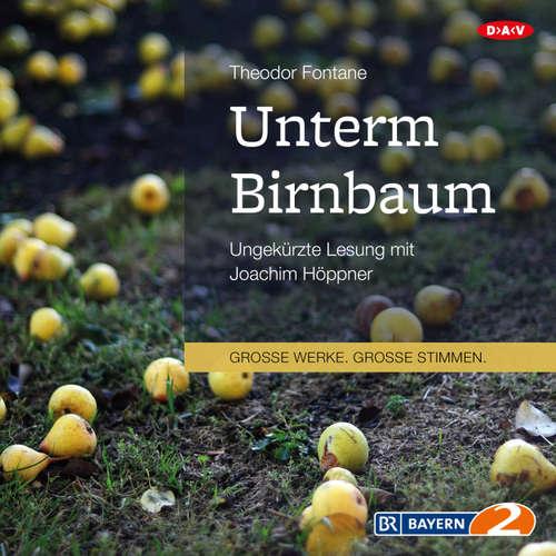 Hoerbuch Unterm Birnbaum - Theodor Fontane - Joachim Höppner
