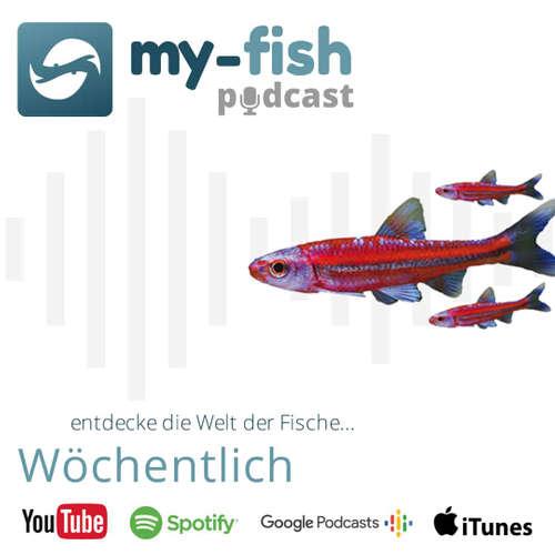 my-fish (Aus Freude an der Aquaristik Podcast)