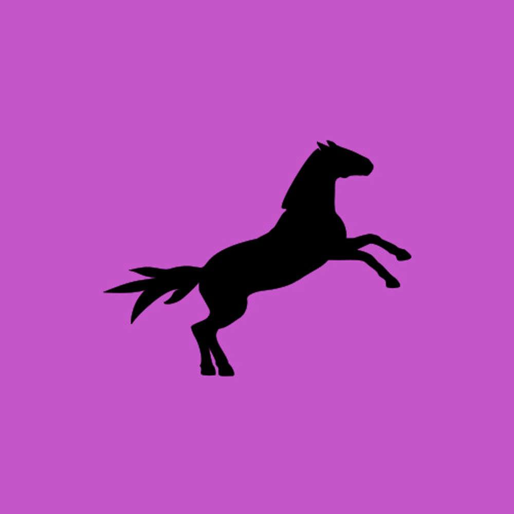 Jubiläum garantiert ohne Pferd(ewitze)