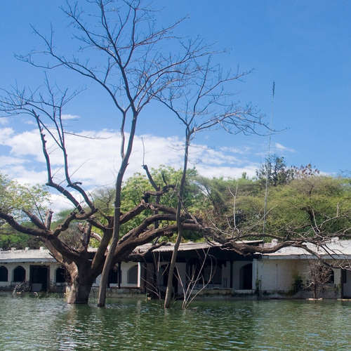 Wenn das Wasser alles schluckt. Kenias Seen gehen über die Ufer