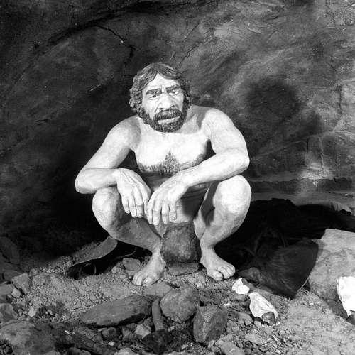 Sensible und schmerzempfindliche Neandertaler