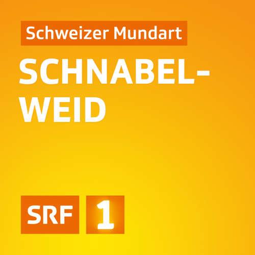 Querschnitt woerdz Festival 2020